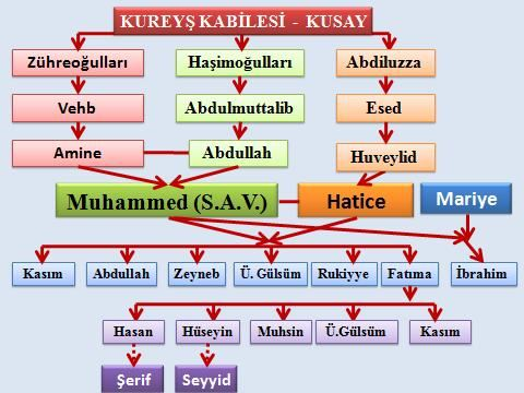 Peygamberimizin aile soy ağacı şema şeklinde gösteriniz